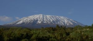 Strategia Kilimandżaro - aktualizacja #035 - 23.07.2021