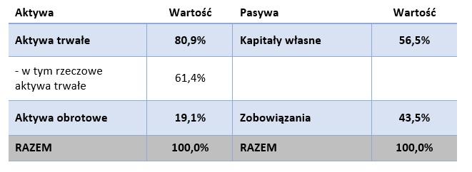 Struktura bilansu JSW (30.06.2020)