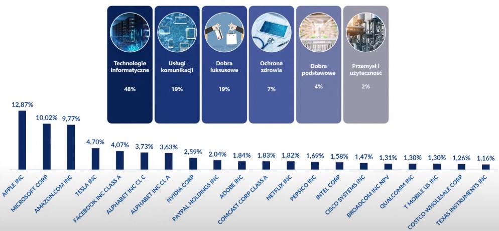 Kompozycja sektorowa Nasdaq - 100 oraz największe spółki